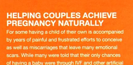 140301 - Motherhood-Helping Couples Achieve Pregnancy Naturally - Banner